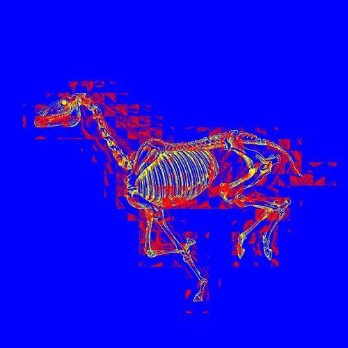HORSE-DEATH